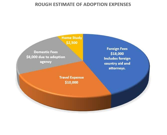 Graph showing adoption expenses