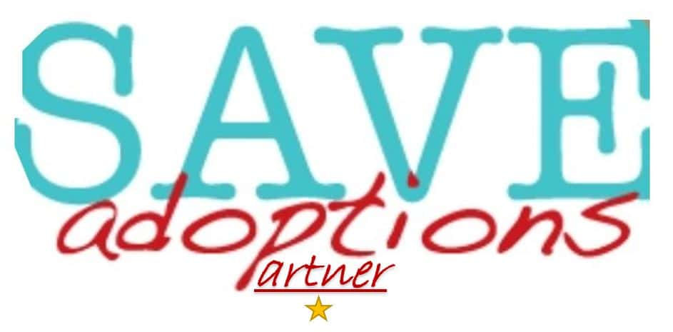 Partnering with Save Adoption Coalition for International Adoption.